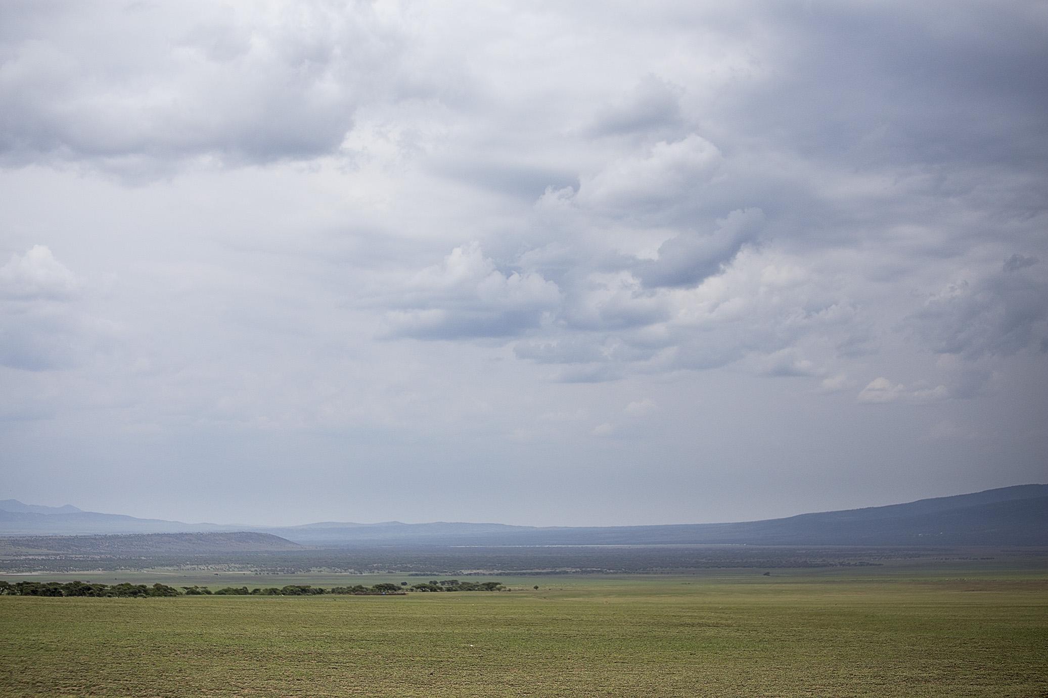 serengeti02